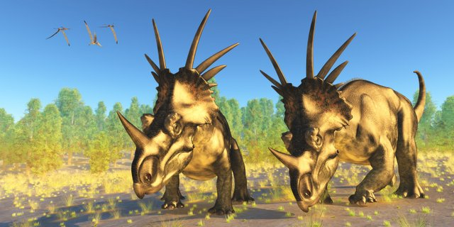 A-spiked-frill-Styracosaurus-how-did-dinosaurs-protect-themselves-Adventuredinosaurs