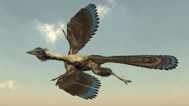 Archeopterix-one-of-the-first-birds-AdventureDinosaurs