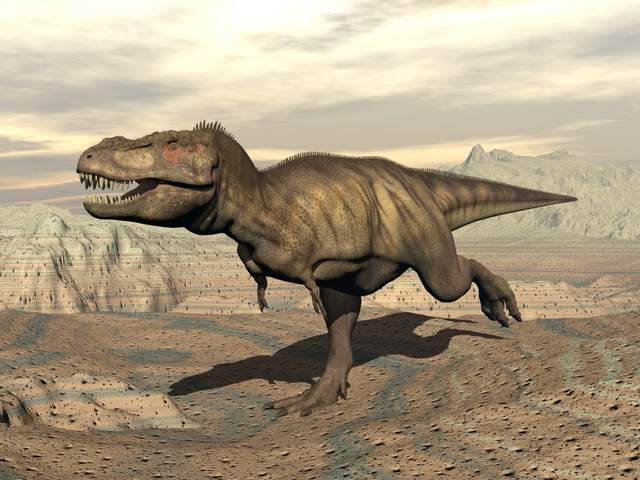 Would-a-t-rex-really-shake-the-ground-Adventuredinosaurs