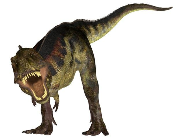T-rex-was-king-of-the-dinosaurs-and-terrifying-Adventuredinosaurs