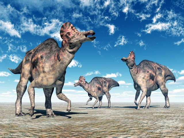 Corythosaurs-types-of-duck-billed-dinosaurs-AdventureDinosaurs
