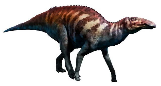 Non-crested-Hadrosaurid-AdventureDinosaurs