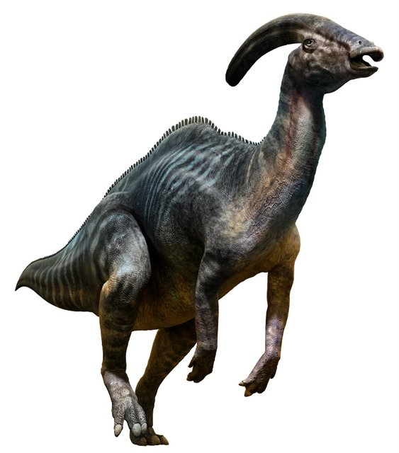 Parasaurolophus-a-hollow-crested-Hadrosaurid-AdventureDinosaurs