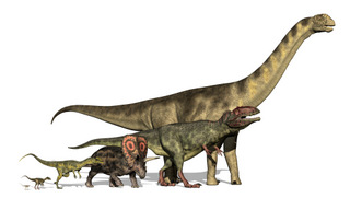 What-do-all-dinosaurs-have-in-common-AdventureDinosaurs