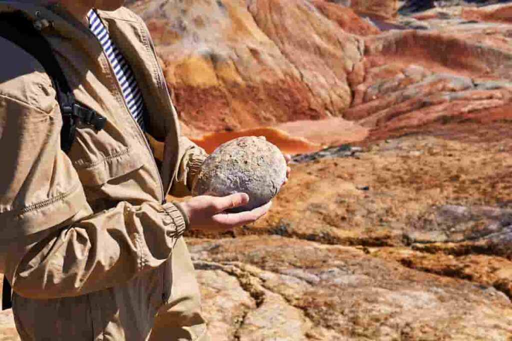 FossilizedDinosaurEggs-AdventureDinosaurs