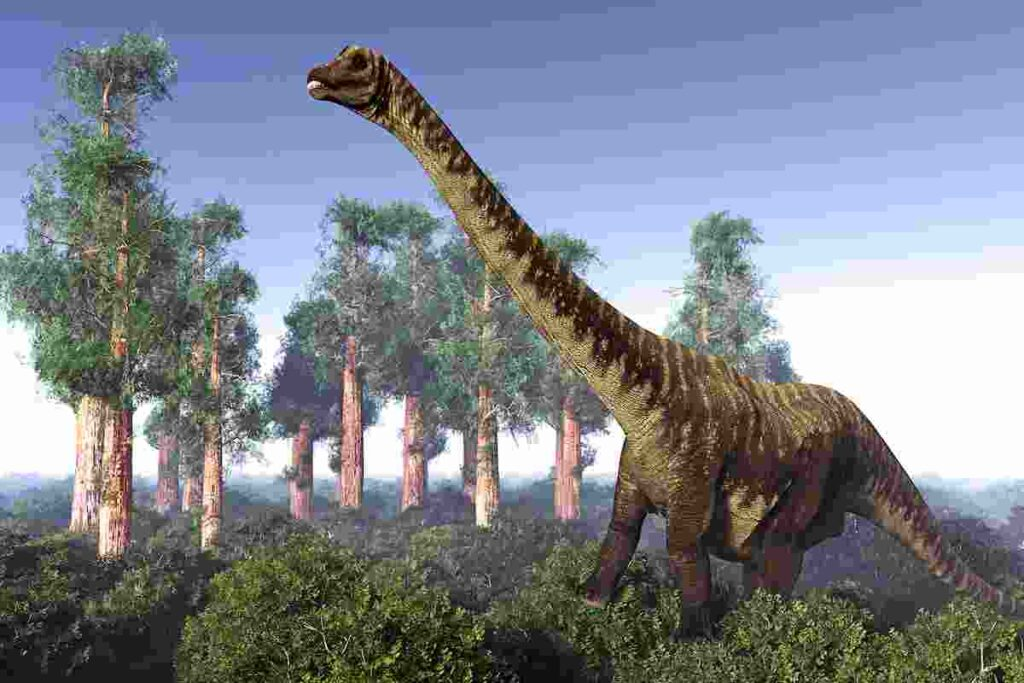 Dreadnoughtus-fossils-are-the-most-complete-sauropod-skeletons-AdventureDinosaurs