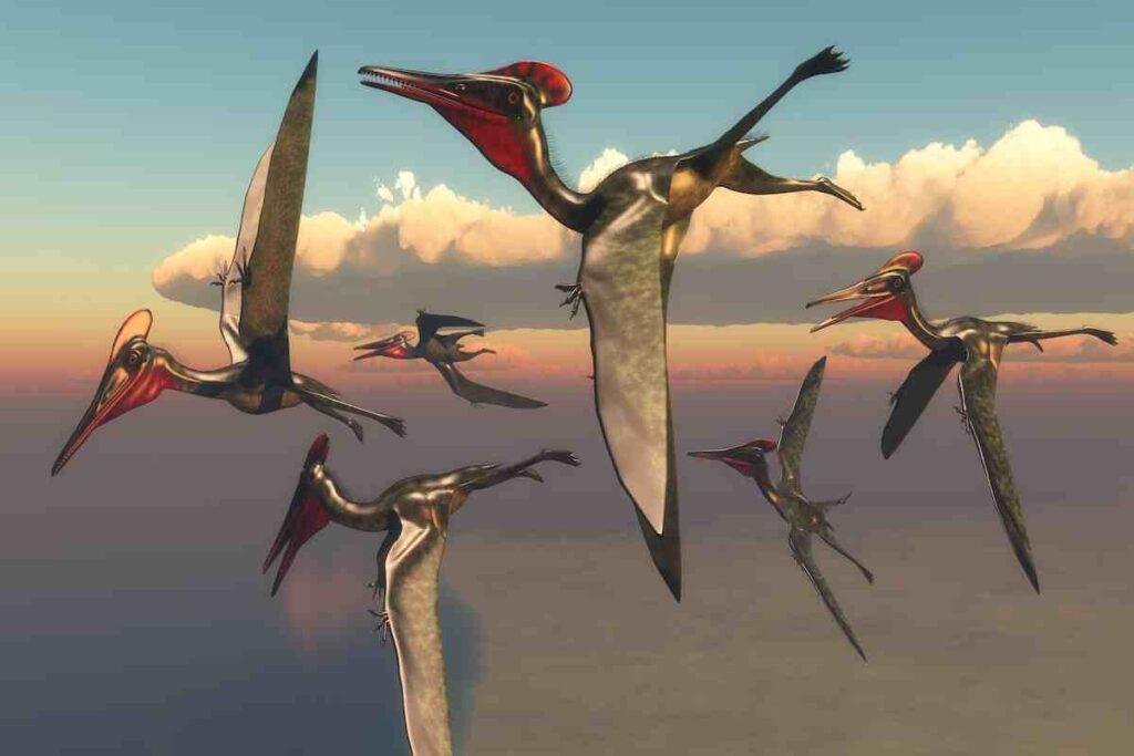 Quetzalcoatlus-pterodactly-how-did-it-fly-AdventureDinosaurs-1