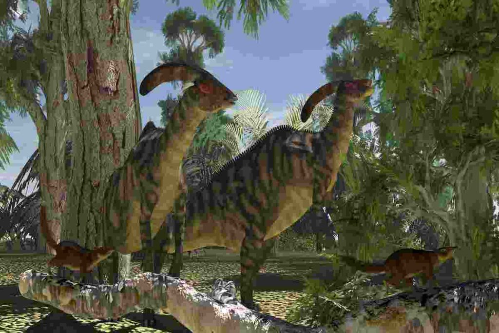 What-is-special-about-the-Parasaurolophus-AdventureDinosaurs