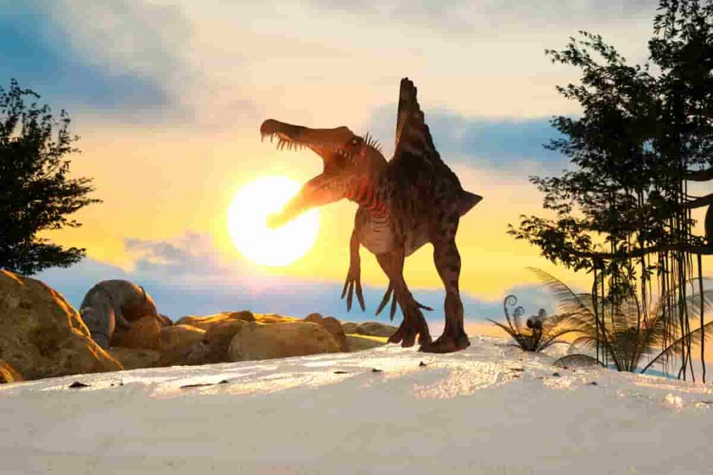 Spinosaurus-fossils-have-been-found-in-the-kem-kem-beds-of-morrocco-AdventureDinosaurs