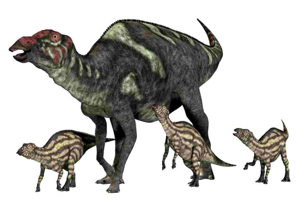 Why-do-scientists-think-hadrosaurs-lived-in-herds-AdventureDinosaurs
