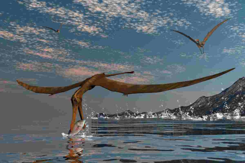 pterosaurs-ate-fish-and-also-insects-and-meat-AdventureDinosaurs